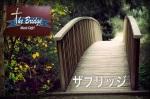 BridgePhoto-1